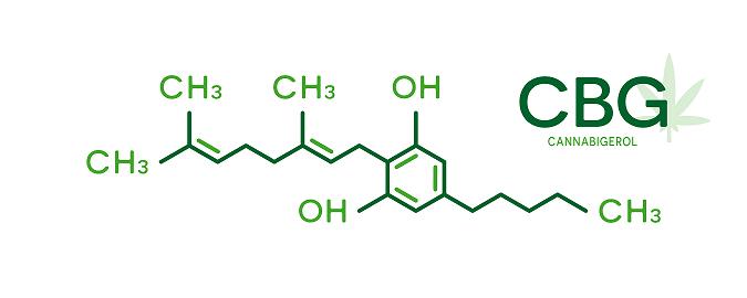 Herbal Salvation Hemp CBG
